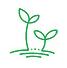 sprouts australia